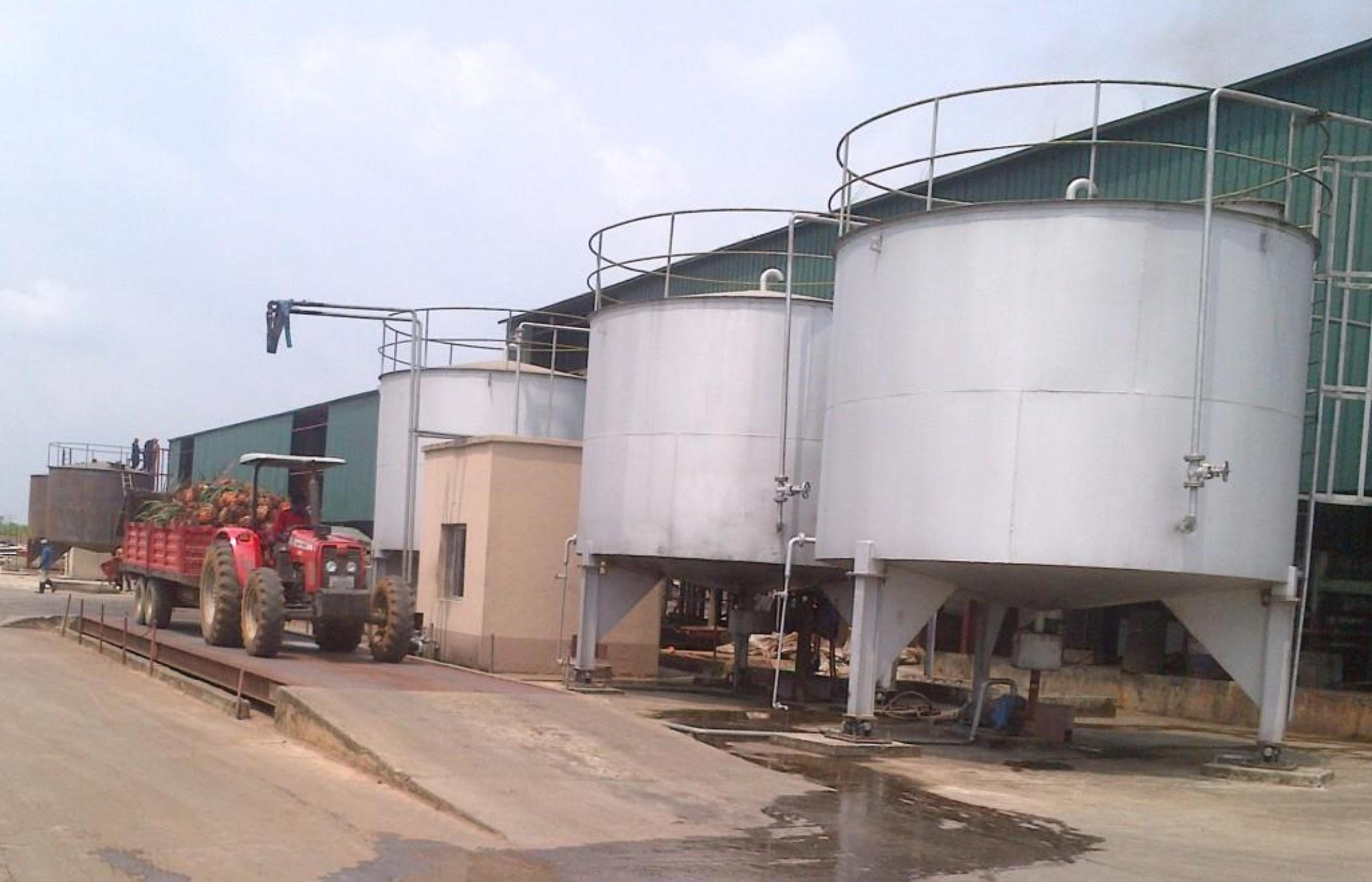 palm-oil-mill